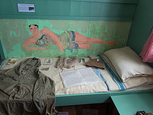 Paintings on the wall of the abandoned Port Lockroy British Base in Antarctica.  -  Jeff Vanuga