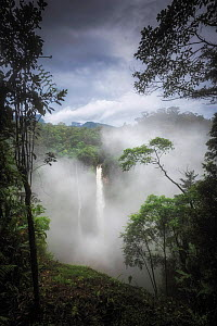 Bajos del Toro waterfall surrounded by cloud forest. Cataracta del Toro, Costa Rica. 2019.  -  Guy Edwardes