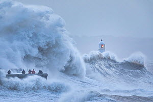 Waves crashing against sea wall and Porthcawl Lighthouse during Storm Ciara, people storm watching surrounded by waves. Mid Glamorgan, Wales, UK. February 2020.  -  Guy Edwardes