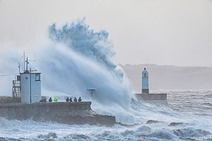 Waves crashing against sea wall during Storm Ciara, group of people storm watching. Porthcawl Lighthouse, Mid Glamorgan, Wales, UK. February 2020.  -  Guy Edwardes
