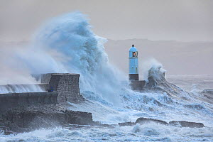 Porthcawl Lighthouse and sea wall battered by Storm Ciara. Mid Glamorgan, Wales, UK. February 2020.  -  Guy Edwardes