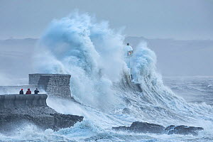 Porthcawl Lighthouse battered by Storm Ciara, man photographing storm from sea wall. Porthcawl, Mid Glamorgan, Wales, UK. February 2020.  -  Guy Edwardes