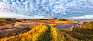 Alnmouth viewed across Marram grass (Ammophila arenaria) on sand dunes and River Aln. Northumberland, England, UK. December 2018.  -  Guy Edwardes