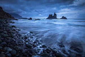 Coastline with pebble beach and sea stacks. Playa de Benijo, Tenerife, Canary Islands, Spain. March 2020.  -  Guy Edwardes