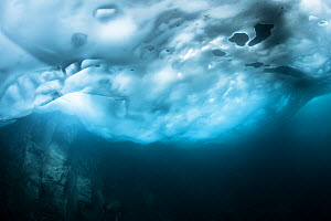 Ice in a mountain lake. Aiguilles Rouges Reserve, Haute-Savoie, France. July.  -  Remi Masson