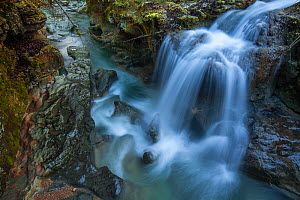 Waterfall in the Seran river flowing through the Thurignin Gorge, Ain, Alps, France, January 2020.  -  Remi Masson