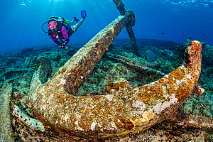 Diver exploring the wreckage of the wreck of the Glamis finding a large anchor, East End, Grand Cayman, Cayman Islands, British West Indies. Caribbean Sea.  -  Alex Mustard