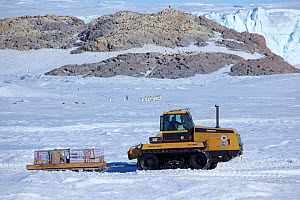 Tractor vehicle and Adelie penguin (Pygoscelis adeliae) colonies, Dumont d'Urville station, Antarctica. December 2012  -  Fred Olivier