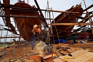 Shipyard for building and renovation traditional wooden fishing boats, in the fishing harbour of Wai Luo Gang, Guangdong province, China November 2015.  -  Staffan Widstrand / Wild Wonders of China