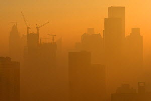 Yellow smog in different light, downtown Tianjin City, China  -  Staffan Widstrand / Wild Wonders of China