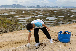 Students cleaning the beach at Horseshoe crab release event oragnized by Ocean Park Conservation Foundation, Hak Pak Nai beach, Yue Long, Hong Kong, China  -  Wayne Wu Ying / Wild Wonders of China