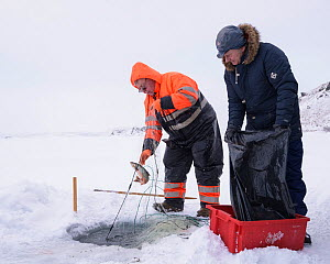 Ice fishing with nets on lake Myvatn, Iceland, March 2018.  -  Niall Benvie
