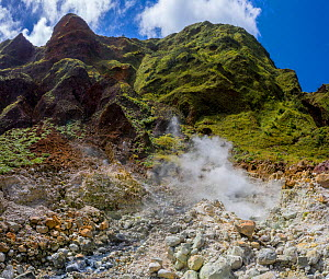 Streams through rocks on side of active volcano, with steam and sulphur fumes. Valley of Desolation, Morne Trois Pitons National Park, Dominica, Lesser Antilles. 2020.  -  Derek Galon
