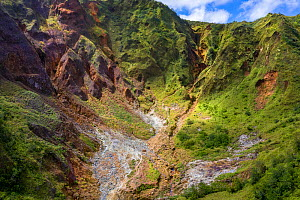 Mountainside with hot mineral streams, on active volcano. Tourists in valley. Valley of Desolation, Morne Trois Pitons National Park, Dominica, Lesser Antilles. 2020.  -  Derek Galon