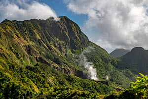 Steam rising from Boiling Lake, a sulphur lake surrounded by cloud forest on active volcano. Morne Trois Pitons National Park, Dominica, Lesser Antilles. 2020.  -  Derek Galon