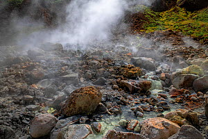 Rocky slope with hot stream and steaming sulphur fumes from active volcano. Valley of Desolation, Morne Trois Pitons National Park, Dominica, Lesser Antilles. 2020.  -  Derek Galon