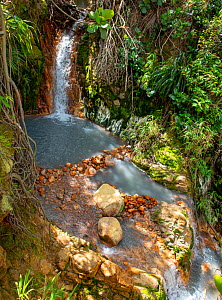 Hot sulphur waterfall in forest, on active volcano. Valley of Desolation, Morne Trois Pitons National Park, Dominica, Lesser Antilles. 2020.  -  Derek Galon
