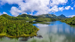 Cloud forest on mountains surrounding Freshwater Lake at approximately 2500 feet, largest lake on island. Dominica, Lesser Antilles. 2020.  -  Derek Galon