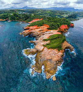 Red Rock coastline and rainforest with mountains in distance, aerial view. Dominica, Lesser Antilles. 2020.  -  Derek Galon