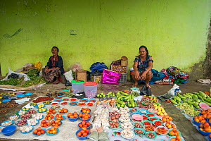 Stallholders at markets stall selling fruits and vegetables including onions, garlic, chili peppers, ginger and lemons. Lospalos, East Timor. 2018.  -  Jurgen Freund