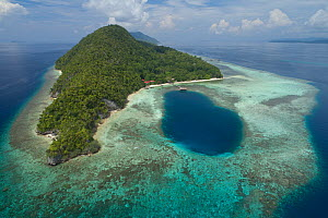 Kri Island surrounded by coral reef, aerial view. Considered one of the best dive locations in the world due to high diversity of marine life. Raja Ampat Islands, West Papua, Indonesia. 2018.  -  Jurgen Freund