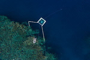 Harrison Integrated Spawn Catcher Rearer Inflatable Pool over Great Barrier Reef, aerial view. Coral spawn caught with arms during synchronised spawning event and held in pool. Larvae reared alongside...  -  Jurgen Freund