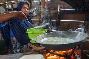 Woman cooking sago dish over open fire, a starch staple most commonly extracted from pith of Sago palm (Metroxylon sagu). West Papua, Indonesia. 2018.  -  Juergen Freund