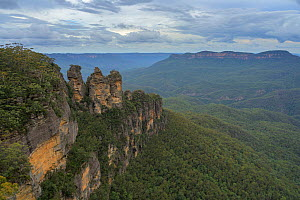 Three Sisters rock formation overlooking forest. Katoomba, Blue Mountains National Park, New South Wales, Australia. 2020.  -  Juergen Freund