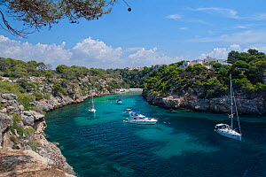 Yachts moored in the cove at Cala Pi, viewed from clifftops, Mallorca south coast, August 2018.  -  Nick Upton