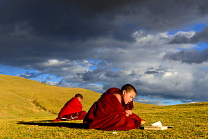 Buddhist novices studying and reciting mantra, outdoors sitting in steppe in stormy light. Ganden Thubchen Choekhorling Monastery, Litang, Garze Tibetan Autonomous Prefecture, Sichuan, China. October...  -  Enrique Lopez-Tapia