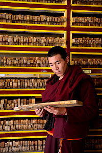 Monk holding wooden plate for printing Buddhist texts, plates stacked in shelves behind. In library, Palpung Monastery, Kham, Dege County, Garze Tibetan Autonomous Prefecture, Sichuan, China. 2016.  -  Enrique Lopez-Tapia