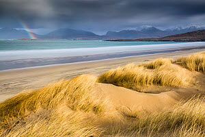 Sand dunes and beach under stormy sky, rainbow in distance. Luskentyre, Isle of Harris, Outer Hebrides, Scotland. March 2015.  -  Guy Edwardes