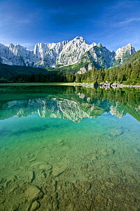 Julian Alps and coniferous forests of Planica valley reflected in lake, stones at bottom of lake in foreground. Zelenci Springs Nature Reserve, Slovenia. July 2007.  -  Guy Edwardes
