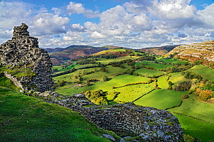 View looking looking north west from the ruined walls of Castell Dinas Bran with the Eglwyseg escarpment on the right and Llantysilio Mountain in the background North Wales, UK, October.  -  Alan Williams