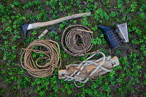 Tools used for traditional tree beekeeping. Tree hive beekeeping is a traditional practice that goes back 1000 years, Poland.  -  Ingo Arndt