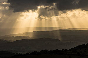 Crepuscular rays over the Usk Valley from the Black Mountains, Brecon Beacons National Park, Powys, Wales, UK, June.  -  Guy Edwardes