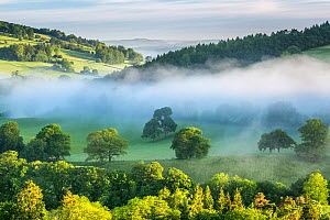 Usk Valley near Crickhowell, Brecon Beacons National Park, Powys, Wales, UK, June.  -  Guy Edwardes