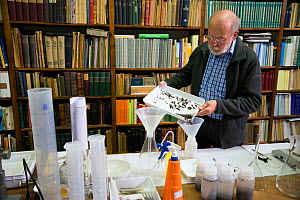 Entomologist with sample of insects caught in malaise trap, refernce books in background. Long-term monitoring has revealed a 75% decline in insect biomass over 27 years. Entomological Society Krefeld...  -  Edwin Giesbers