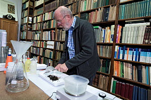 Entomologist with Insect sample in tray prior to weighing, reference books in background. Long-term monitoring has revealed a 75% decline in insect biomass over 27 years. Entomological Society Krefeld...  -  Edwin Giesbers