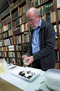 Entomologist tipping Insects caught in malaise trap into tray, reference books in background. Long-term monitoring has revealed a 75% decline in insect biomass over 27 years. Entomological Society Kre...  -  Edwin Giesbers