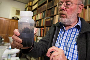 Biologist from Entomological Society Krefeld holding sample of Insect specimens from malaise trap. Long-term monitoring has revealed a 75% decline in insect biomass over 27 years. Germany, 2019.  -  Edwin Giesbers