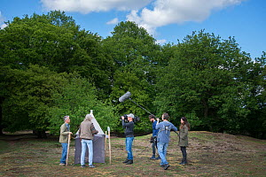 Film crew interviewing biologists following publication of research showing a 75% decline in insect biomass over 27 years. Research a collaboration between the Krefeld Entomological Society and Radbou...  -  Edwin Giesbers