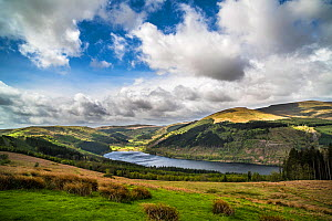 Talybont Reservoir, Brecon Beacons National Park, the largest stillwater reservoir in Brecon Beacons NP, Wales, UK. April  -  Phil Savoie