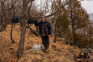 Photographer Sergey Gorshkov setting up remote camera traps to photograph Siberian tiger in Land of the Leopard National Park, Far East Russia. 2019  -  Sergey  Gorshkov
