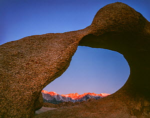 Mobius Arch, eroded granite arch framing Mt. Whitney and the eastern front of the Sierra at dawn, Alabama Hills, California, USA.  -  Jack Dykinga