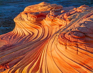 Wind sculpted petrified sand dune (sandstone) bands at sunset, Paria Canyon-Vermilion Cliffs Wilderness, Arizona, USA.  -  Jack Dykinga