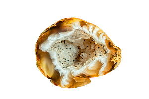 Geode, geological secondary formation within sedimentary and volcanic rock. Geodes are hollow, vaguely circular rocks showing minerals / crystals  -  Philippe Clement
