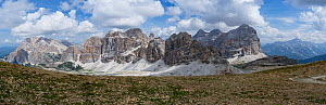 Scree rich in alpine plants with the Fane Alps mountain range beyond including Marmolada, the highest peak in the Dolomites at 3343m. Underground tunnels built during the First World War lie in this a...  -  Paul  Harcourt Davies