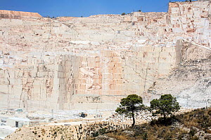 Marble quarry, two trees in foreground. Near Alicante, Spain. July 2016.  -  Pal Hermansen