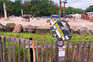 Visitor binoculars pointing to the African elephant (Loxodonta africana) enclosure, Ouwehands Zoo, Rhenen, The Netherlands. Captive.  -  Edwin Giesbers